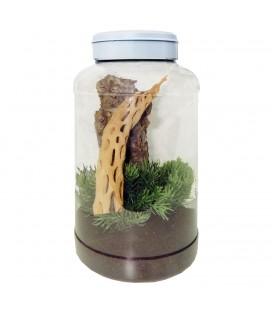 Insectarium Lucky Reptile 5 Litres (Sans Déco- Ni substrat)