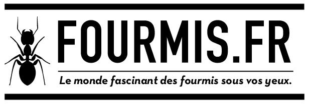 fourmis-fr-v2