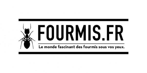 logo-fourmis-fr-N-D-300x300