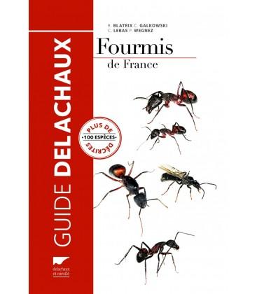 Guide Delachaux: Fourmis de France Plus de 100 espèces décrites