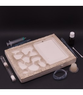 Pack All in 1: ANts Pad Terra + lasius niger