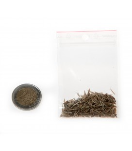 Bag of English Grass Seed