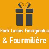Pack Fourmiliere LAsius Emarginatus