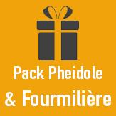 pack fourmiliere et pheidole